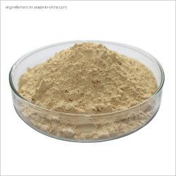 Produttore professionista estratto in polvere di Acanthopanax Senticosus radice e stelo Ginseng siberiano P. E.