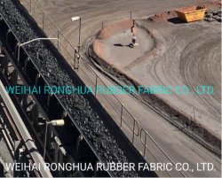 Vendita calda/PE/Nn/resistenza termica/di temperatura elevata/resistente al fuoco/petrolio resistente/nastro trasportatore di gomma resistente resistente/resistente all'uso/dell'alcali della rottura e dell'acido