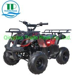 세륨 쿼드를 가진 최신 판매 차량은 125cc ATV를 자전거를 탄다