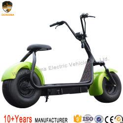 2019 [هرلي] كهربائيّة [سكوتر] مدينة جوز هند [هي بوور] درّاجة كهربائيّة سمين