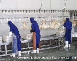 Slaughtering 선 --닭, 오리, 거위