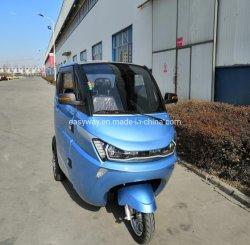 Motorino elettrico di Trike di alta qualità delle tre rotelle con il motore 1500W