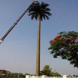 강철에 의하여 직류 전기를 통하는 위장된 소나무 또는 종려 큰 옥외 인공적인 나무 탑
