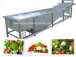 물 저축 기포 Vegetable&Fruit 대중적인 세탁기