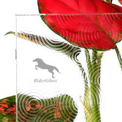 3-8 mm de couleur vert clair usine de verre à motifs Pattern Mayflower