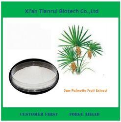 De alta qualidade ISO Fabricante Saw Palmetto Fruit Extract