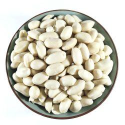 Горячие Продажи китайского бланшированные белый ядра арахиса Groundnut