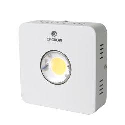 Haut de page Haut de vente par 100W3590 Full Spectrum Cxb COB LED feux de croissance de la Chine