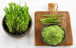 Lebensmittel und Getränke Qualität Weizengras Extrakt Wasser löslichen Weizen Graspulver