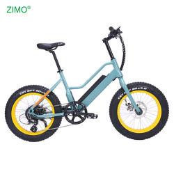 2021 인기 있는 핫 세일 전기 자전거 페달 어시스트 전기 자전거 48V 750W 팻 타이어 전기 자전거