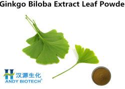 純粋で自然な乾燥されたイチョウのBilobaの葉のエキスの粉