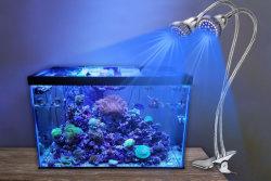 2019 Nouvelle arrivée LED de gradation de l'aquarium pour le poisson et des feux de récif de corail