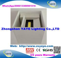 Lampada esterna dell'indicatore luminoso della parete del up-Down 10With40W LED della PANNOCCHIA di migliore disegno di vendita di Yaye 18 più nuovo con la garanzia di anni Ce/RoHS/2/3
