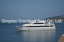 barca di passeggero utilizzata 31m di velocità
