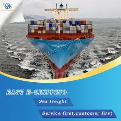 La moins chère de la Chine au transport de conteneurs USA