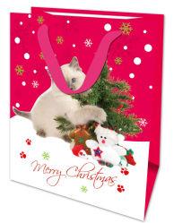 赤色の銀はショッピングギフトのペーパー袋を設計するクリスマスを熱 Stamping