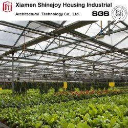 Grande Agricultura folha da estrutura de aço Green House Plantação