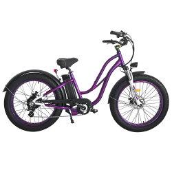 Jd-20A19-1 il vecchio modo viola di colore 750W va in bicicletta le bici elettriche