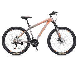 titanio 48V 29 16 bicicletta elettrica piegante grassa della bici della montagna 1000W E di Fiido D2s della raffica di Fnhon del blocco per grafici di Brompton della gomma di pollice 20 pollici