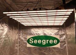 공장 인기 상품 800W LED는 Samsung Lm301b와 가진 바를 증가한다