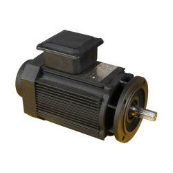 2.2kw 연약한 시작 저잡음 적은 진동을%s 가진 전기 브레이크 모터 (YE2-90L-2P)