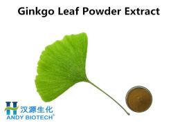 Ginkgo Biloba Extract порошок 24% /6% травяной дополнение