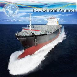 المحيط الشحن / الشحن البحري من الصين إلى كولومبيا وفنزويلا وغيانا وسورينام والاكوادور وبيرو وبوليفيا وتشيلي وباراغواي وأوروغواي والأرجنتين