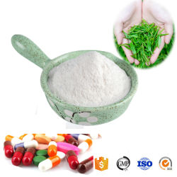 Grüner Tee-Auszug-Qualität L-Theanine Puder