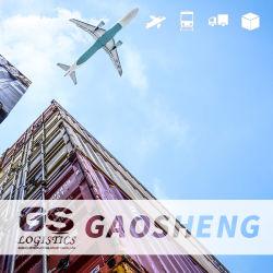 الشحن الجوي من الصين إلى أوروبا ماليزيا أستراليا / نيجيريا / الفلبين / المالديف / إندونيسيا / تايلاند / فيتنام / كمبوديا / سنغافورة دي دي دي بي الشحن الجوي/البحري
