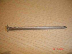 Оцинкованный обычной общей стальной ногтей