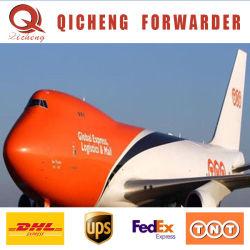Londres UK Discounted U. a. E Swift Coffre-fort taux d'UPS DHL International Express Chemin de fer de la Chine Agent d'expédition à la Bulgarie