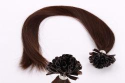Vor geklebte Keratin-Haar-Extension, Nagel - Spitze-Haar-Extension (BHF-PN001)