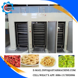 Può essere cronometrato e registrare la macchina di verdure dell'essiccatore della frutta dell'alimento di secchezza del disidratatore dell'ortaggio da frutto dell'aria calda di temperatura