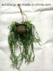PE Mini cordões no cesto para pendurar planta artificial para decoração (32223)