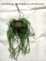 Mini frutta del PE che appende il cestino artificiale della pianta per la decorazione domestica (32223)