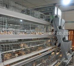 Il pulcino della pollastra mette in gabbia la gabbia del pollo della strumentazione di pollicultura