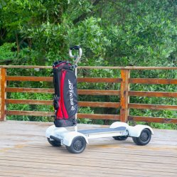 Modello Golfboard del motorino elettrico di terreno da golf 1000W 60V nuovo per gli adulti