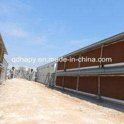 鉄鋼構造養鶏場の建設