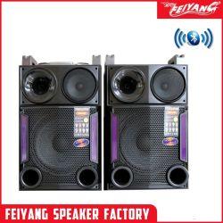 Feiyang Kvg 2.0 Professional altavoz con micrófono HiFi de gran potencia E247