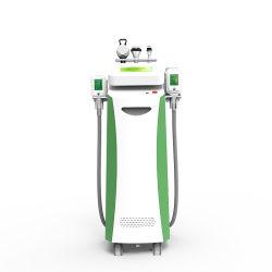 Vorm Cryo Cryolipolysis 2 van uitstekende kwaliteit van de Apparatuur van de Schoonheid de Koele de Vette Vorst van de Machine van het Vermageringsdieet van Handvatten