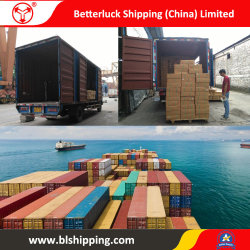 Verzending LCL van China aan de Agent van de Vracht van de Consolidatie van de Container van Duitsland