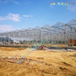 Полого стекла закаленного стекла алюминиевая рама выбросов парниковых газов в сельском хозяйстве коммерческих