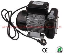 220V электрического насоса подачи топлива дизельного двигателя Self-Priming масляного насоса