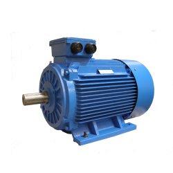 1개의 HP 전동기 AC 220V 기계 드라이브 동시 감응작용 비동시성 단일 위상 3 엔진 속도 댄서 엔진 Y3 Yl- 시리즈 1 마력 모터