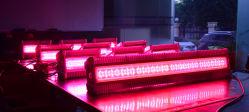 Full Spectrum 600W 300W planta LED crescer para luzes de Emissões