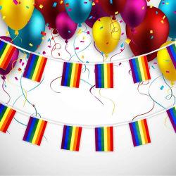 LGBT 프라이드 퍼레이드 페스티벌 파티 폴리에스테르 소량 레인보우 플래그 걸치 동성애 플래그