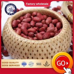 販売のための乾燥されたカーネルピーナツピーナッツの未加工か新しく赤い皮Arachid安く