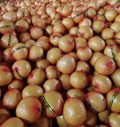 중국 고품질 건강한 과일에서 빨간 신선한 꿀 포멜로 가장 싼 가격