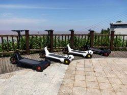 白い塗装 / カラー電動スクーター(ランニングベルト付き)