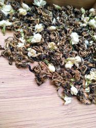 La salud hojas de té negro Té Negro Jazmín